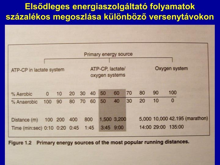 Elsődleges energiaszolgáltató folyamatok százalékos megoszlása különböző versenytávokon