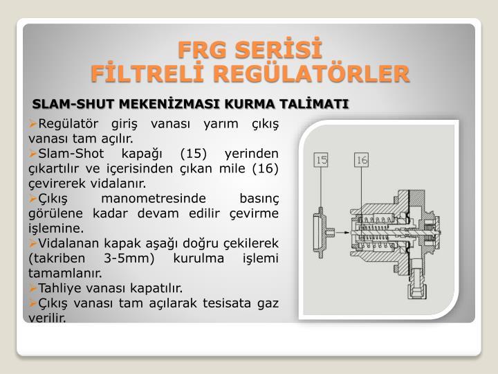 FRG SERİSİ