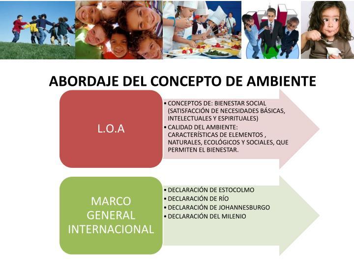 ABORDAJE DEL CONCEPTO DE AMBIENTE