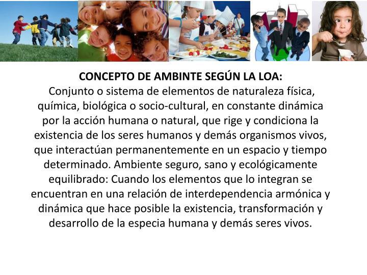 CONCEPTO DE AMBINTE SEGÚN LA LOA: