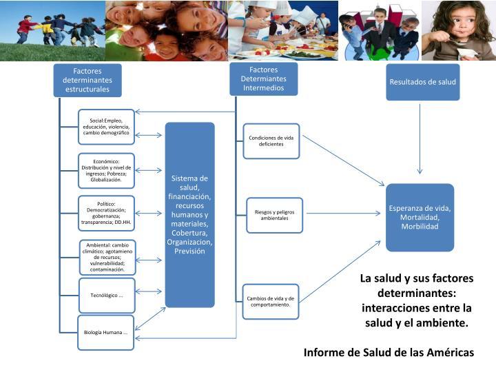 La salud y sus factores determinantes: interacciones entre la salud y el ambiente.