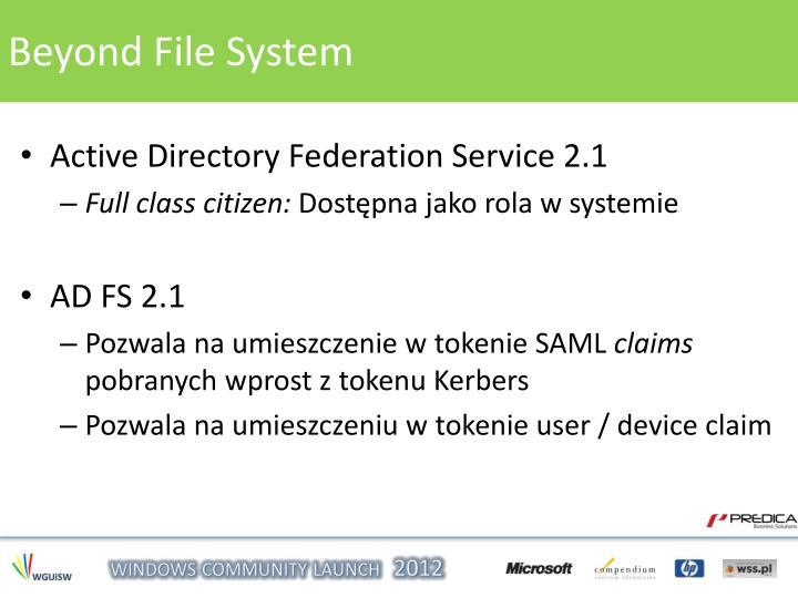 Beyond File System