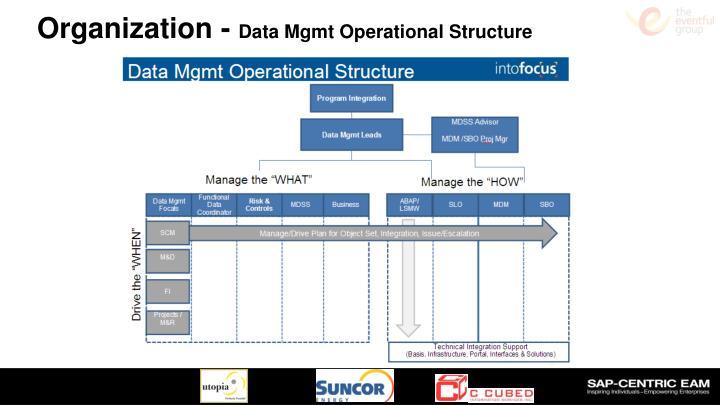 Organization -