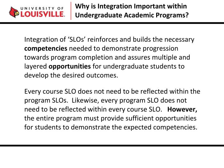 Why is Integration Important within Undergraduate Academic Programs?