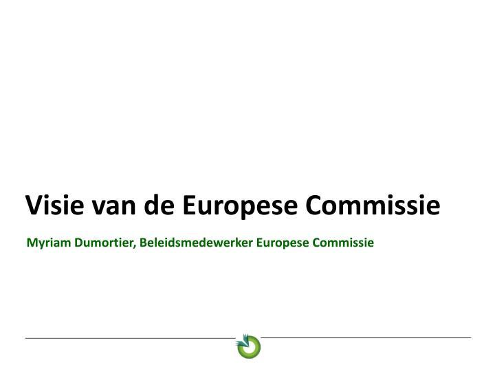 Visie van de Europese Commissie