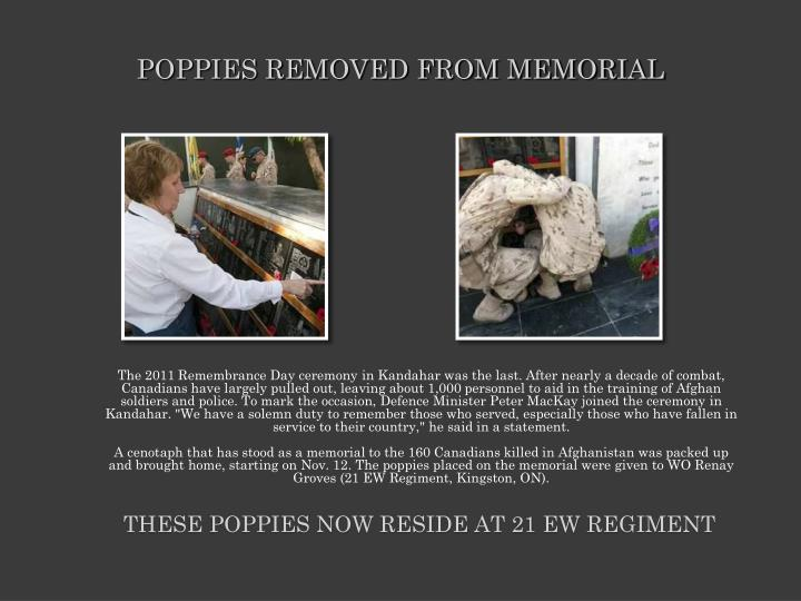 POPPIES REMOVED FROM MEMORIAL