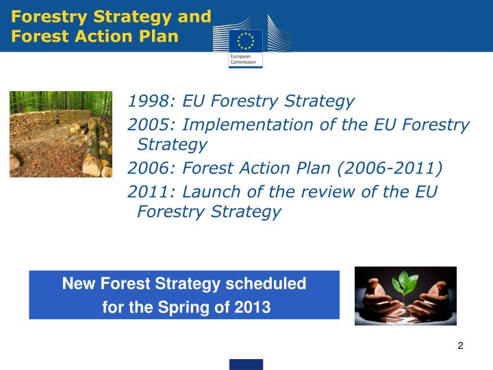 Forestry strategy and forest action plan