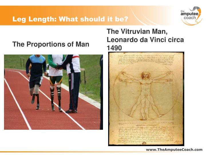 Leg Length: What should it be?
