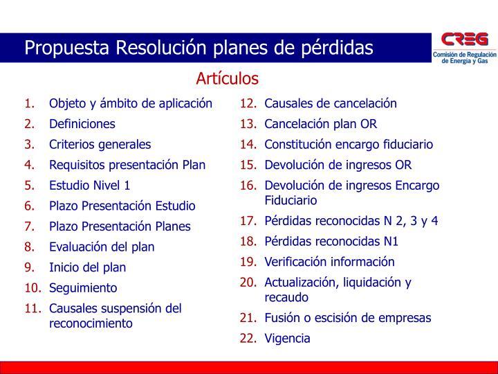 Propuesta Resolución planes de pérdidas