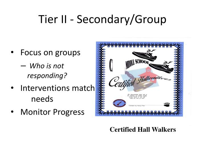 Tier II - Secondary/Group