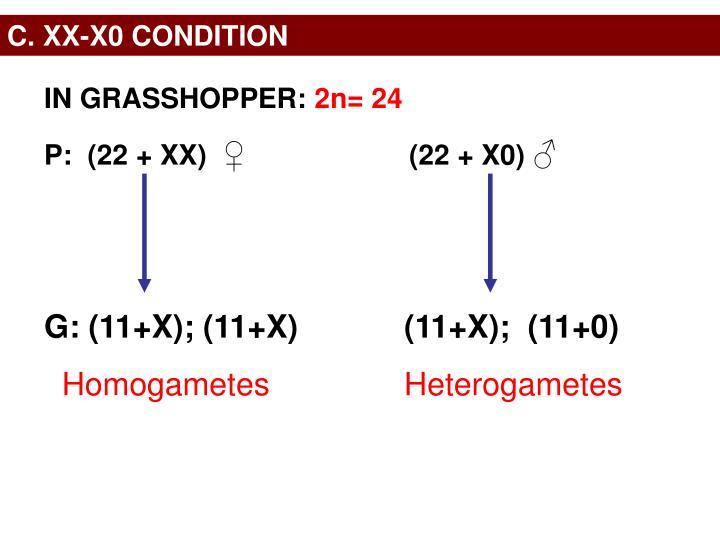C. XX-X0 CONDITION