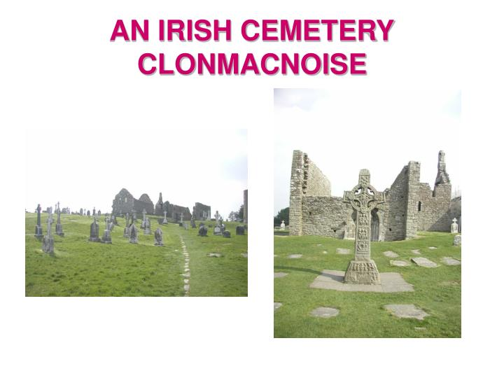 AN IRISH CEMETERY