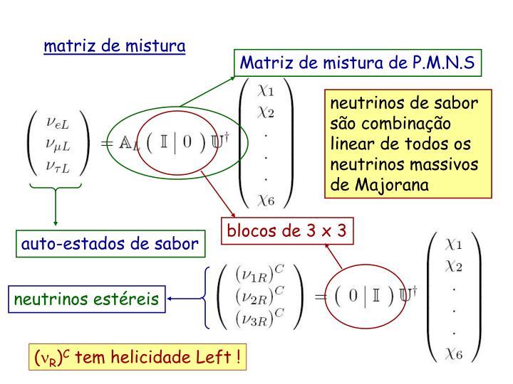 Matriz de mistura de P.M.N.S