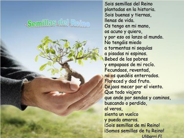 Sois semillas del Reino