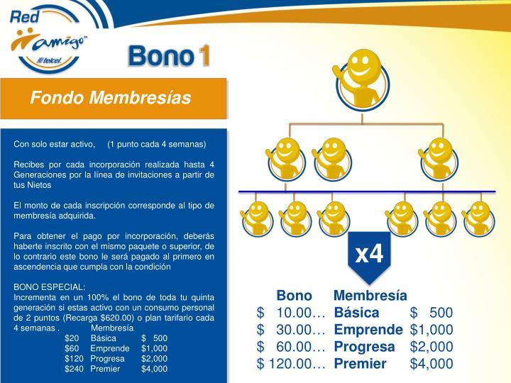 Fondo Membresías