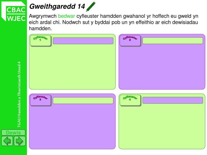 Gweithgaredd 14