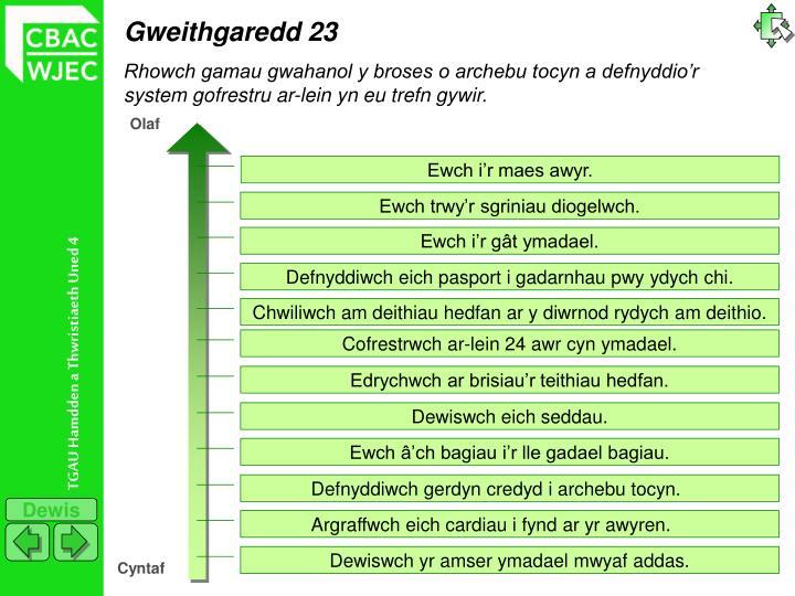 Gweithgaredd 23
