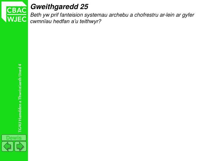 Gweithgaredd 25