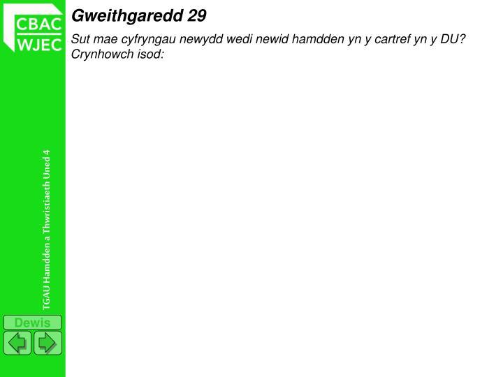 Gweithgaredd 29