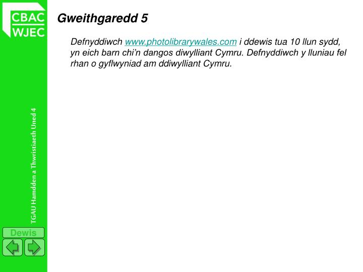 Gweithgaredd 5