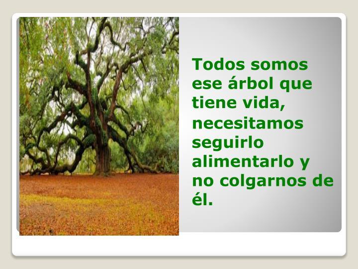 Todos somos ese árbol que tiene vida,