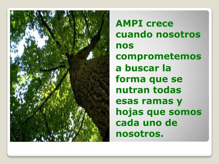 AMPI crece cuando nosotros nos comprometemos