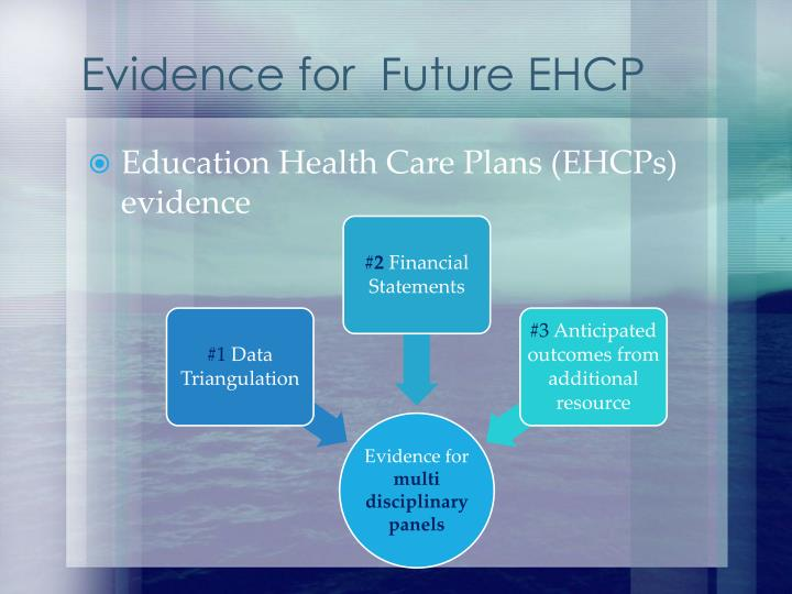Evidence for  Future EHCP