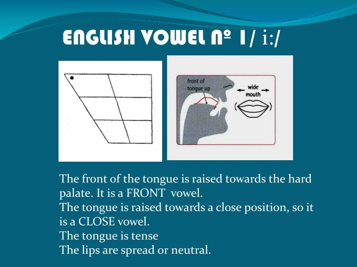 ENGLISH VOWEL Nº 1/