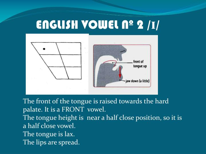 ENGLISH VOWEL Nº 2 /
