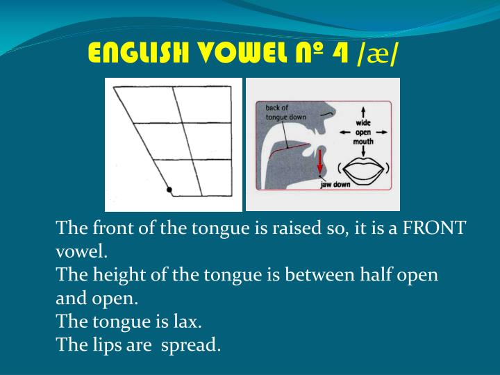 ENGLISH VOWEL Nº 4 /