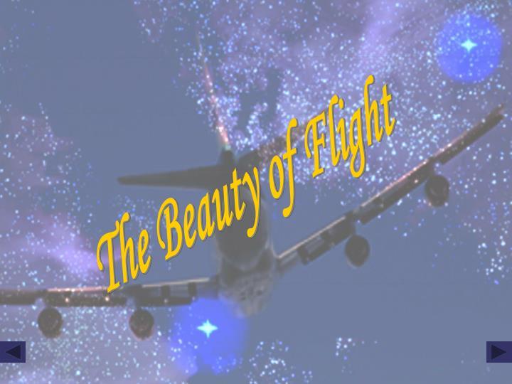 The Beauty of Flight