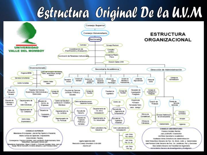 Estructura  Original De la U.V.M