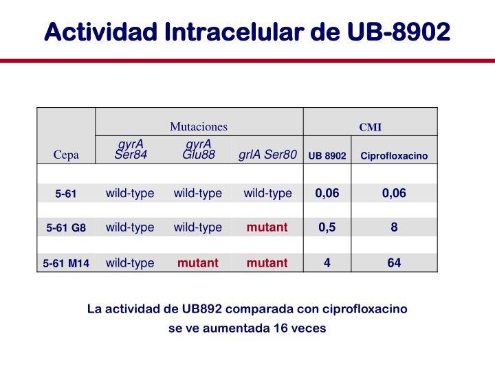Actividad Intracelular de UB-8902