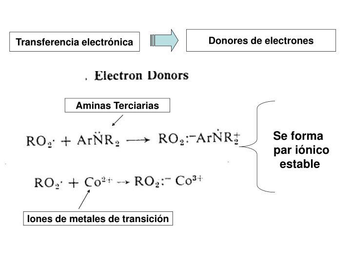 Donores de electrones