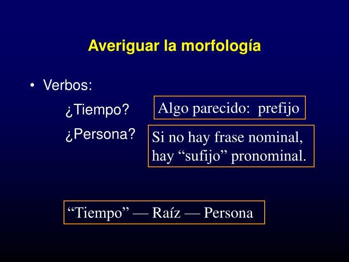 Averiguar la morfología