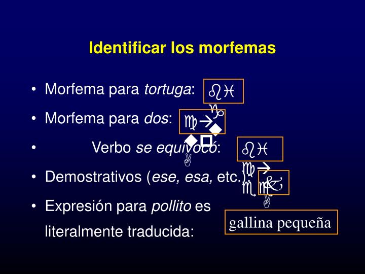 Identificar los morfemas