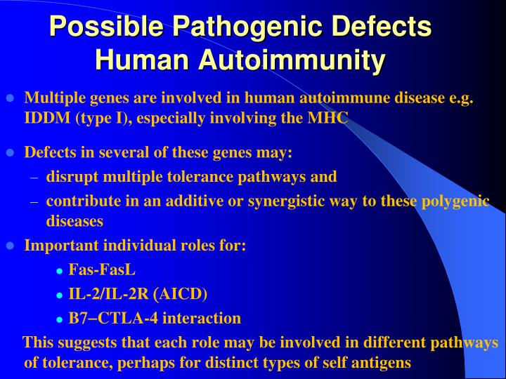 Possible Pathogenic Defects Human Autoimmunity