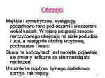 obrz ki3