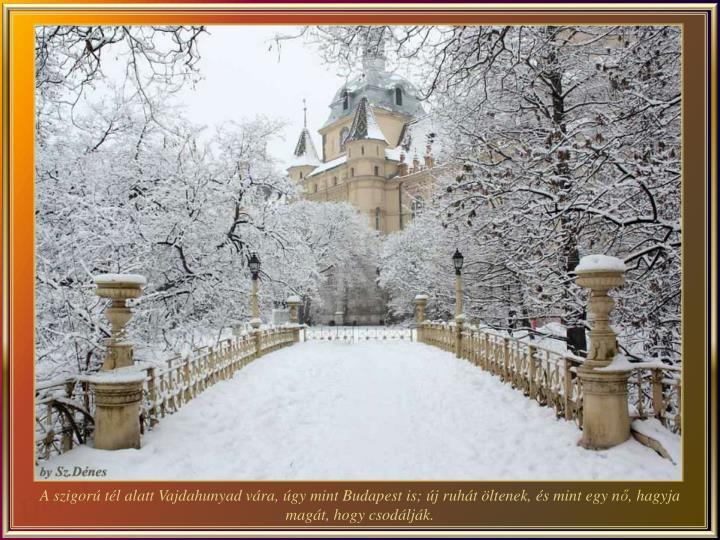 A szigorú tél alatt Vajdahunyad vára, úgy mint Budapest is; új ruhát öltenek, és mint egy n