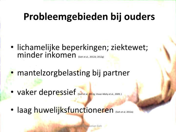 Probleemgebieden bij ouders
