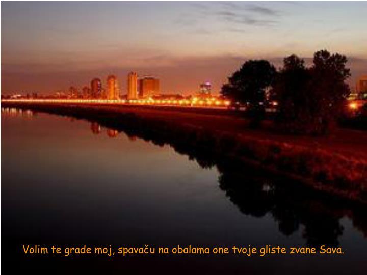 Volim te grade moj, spavaču na obalama one tvoje gliste zvane Sava.