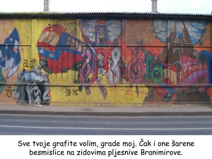 Sve tvoje grafite volim, grade moj. Čak i one šarene besmislice na zidovima pljesnive Branimirove.