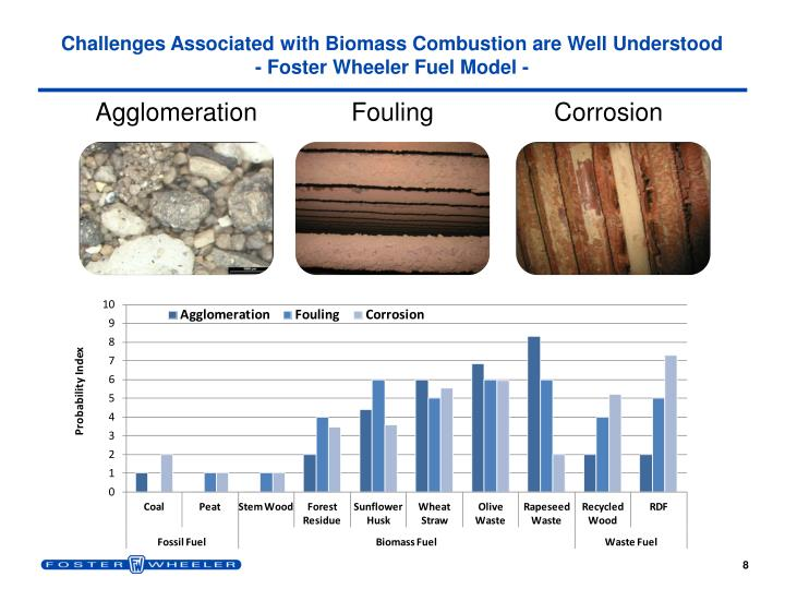 Challenges Associated with Biomass Combustion are Well Understood