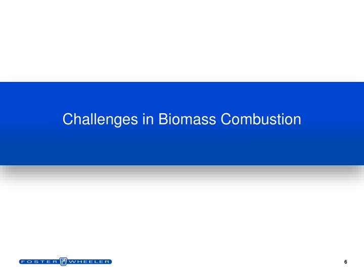 Challenges in Biomass Combustion