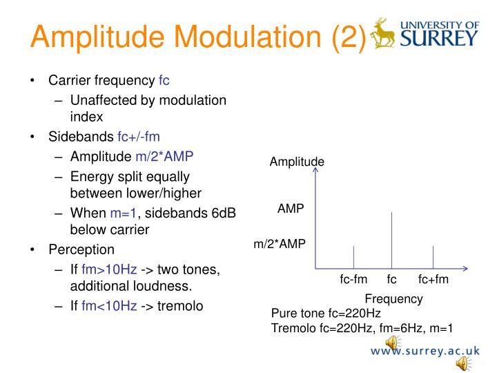 Amplitude Modulation (2)