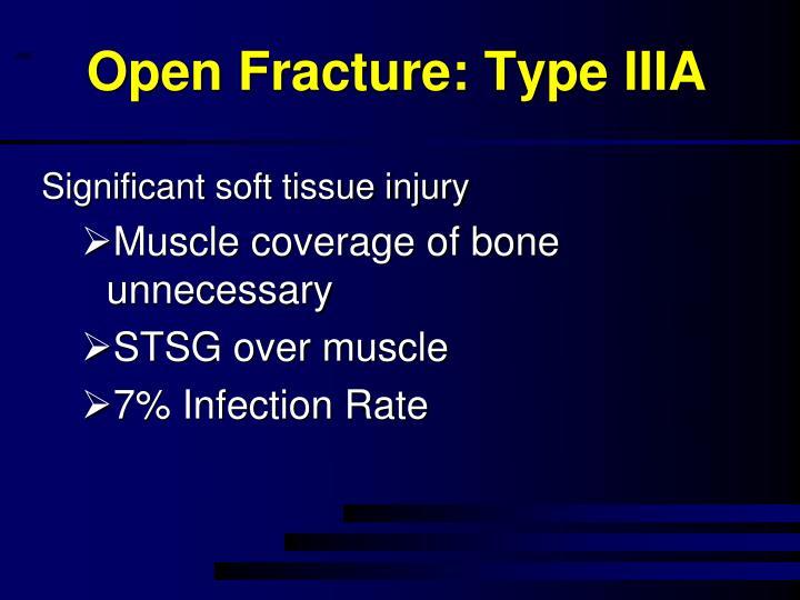 Open Fracture: Type IIIA