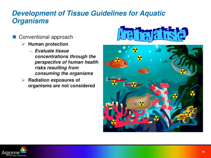 Development of Tissue Guidelines for Aquatic Organisms