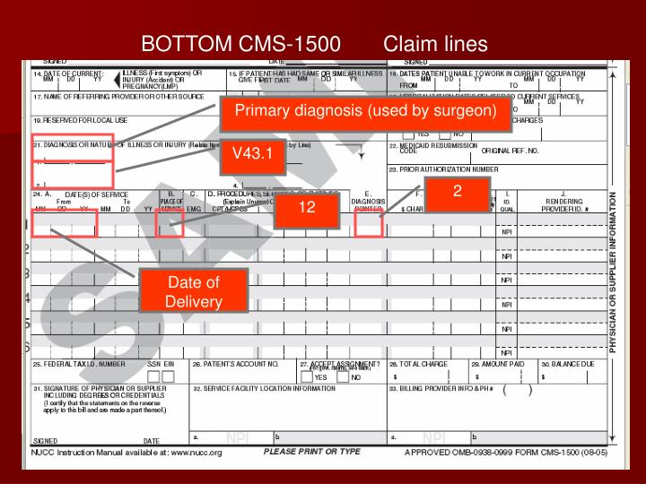 BOTTOM CMS-1500       Claim lines