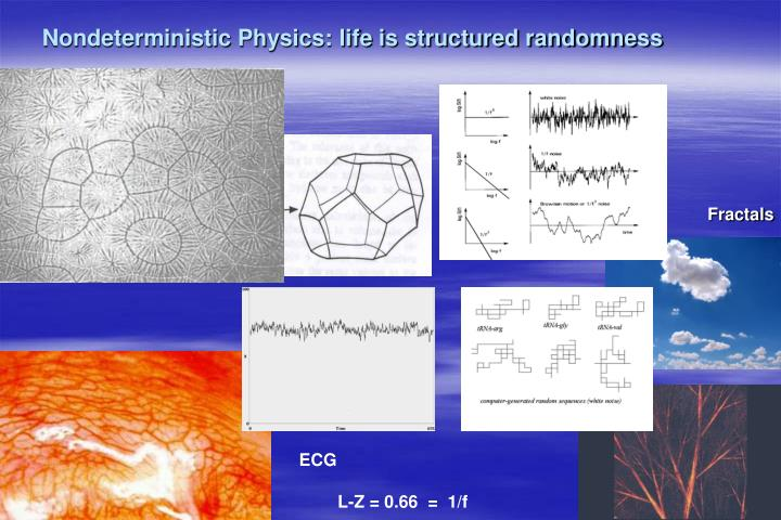 Nondeterministic Physics: life is structured randomness