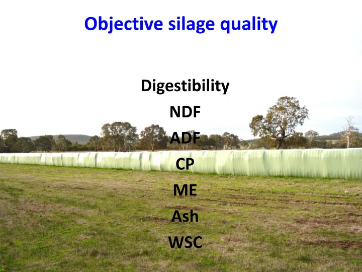 Objective silage quality